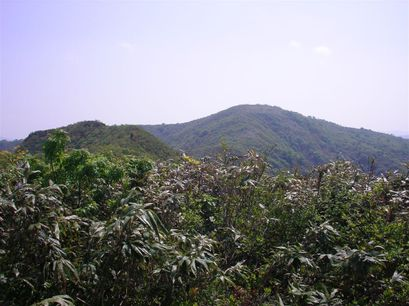 20070524_006